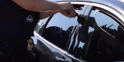 poliziotto-rompe-finestrino-di-un-macchina-con-dentro-i-cani