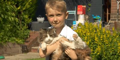 Jongetje met vermiste kat Frankie in zijn armen