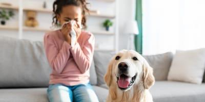 Cosa fare in caso di allergia al cane?