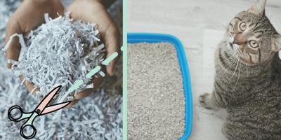 Cómo hacer arena para gatos en casa