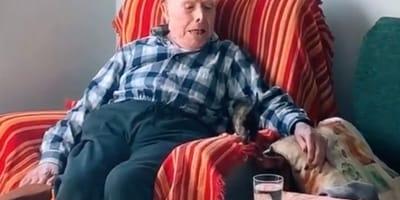 Opa und Katze auf Sessel