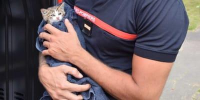 Un bombero adopta al gatito que rescató
