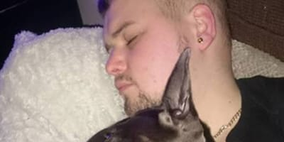 Mann stirbt an Krebs: Kurze Zeit später überschattet ein anderes Drama die Familie