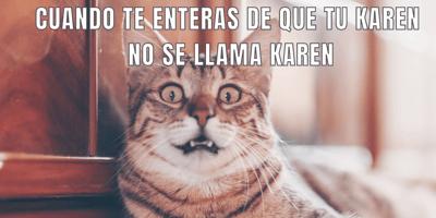 meme de gato y Karen