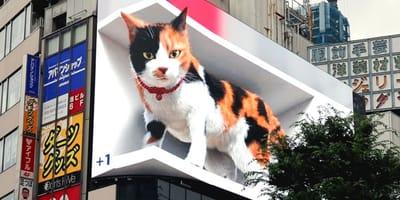 El increíble gato gigante en 3D que sorprende a Tokio