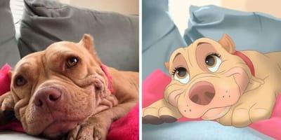 Twój pies bohaterem bajki Disneya? Ta Holenderka sprawia, że jest to możliwe
