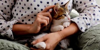 gatto cucciolo tra le braccia della padrona