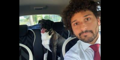 Il gesto del vicesindaco di Empoli nei confronti di un cane smarrito