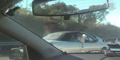 Schlimmer Vorfall auf Autobahn: Polizei nimmt sofort Verfolgung auf!