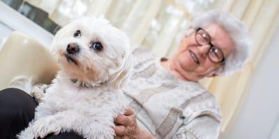 Non-vegan 80-jarige niet langer welkom bij het dierenasiel