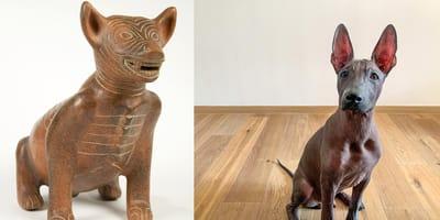 ¿Cómo se dice perro en náhuatl?