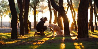 Perro y señor en el parque