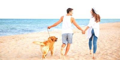ragazzo e ragazza in spiaggia con cane