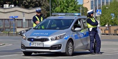 Błąkający się po ulicy pies widzi radiowóz i robi coś, co zadziwia policjantów!