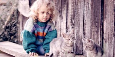 Come fare giocare gatti e bambini?