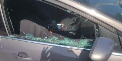Policja uwalnia nieprzytomnego psa z nagrzanego samochodu: reakcja opiekunki jest niebywała!