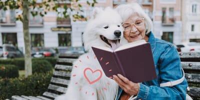 Día del abuelo 2021: 4 motivos para regalar un perro a tus abuelos