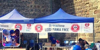 Pantelleria diventerà la prima area al mondo esente da leishmaniosi