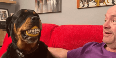 Gogglebox's Malone family announce devastating news about Rottweiler