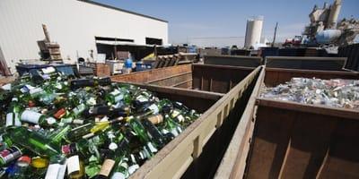 Schreie aus einem Müllcontainer: Beim Blick hinein erschaudert sie vor Entsetzen