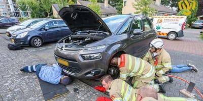 Spectaculaire redding van viervoeter die vast zit in auto