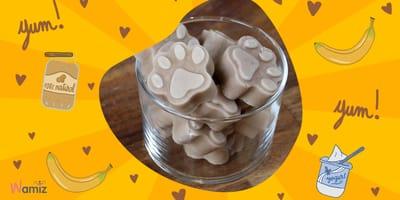 Pet Chef von Wamiz:  Erdnussbutter-Bananen-Eiscreme für Hunde