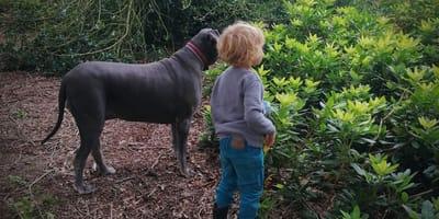 Voorbijganger doet verschrikkelijke uitspraak over hond en kleinkind