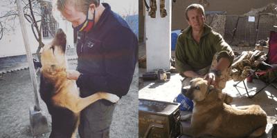 Założyciel schroniska w Kabulu odmawia opuszczenia kraju, jeśli nie będzie mógł zabrać ze sobą zwierząt