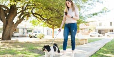 Ragazza che passeggia col cane e guarda il cellulare