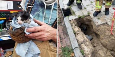 Brandweer Vroomshoop breekt straat open om kitten te redden