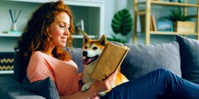 Limiti e carattere dei cani da appartamento