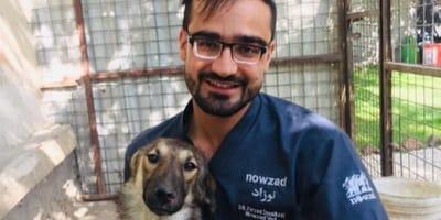 Polémica en Afganistán por salvar la vida de cientos de perros y gatos