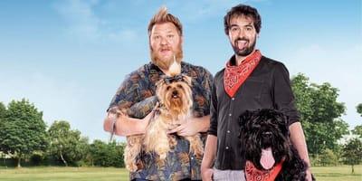 Datingshow voor asielhonden: in België bestaat het