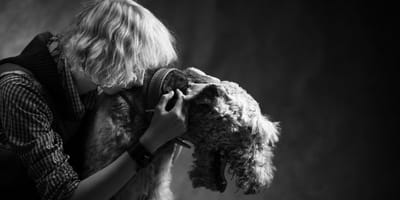 Rouwverlof voor een huisdier? Britse Wendy vroeg het aan