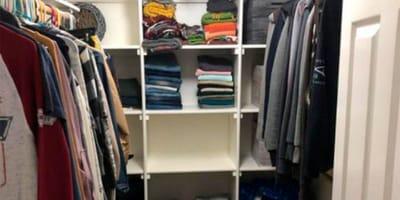 Kot ukryty w garderobie: tylko najbystrzejsi potrafią go znaleźć!