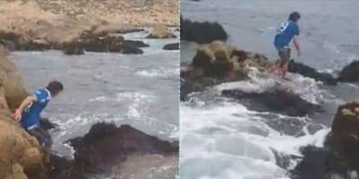 Ve un gatito asustado entre las olas y sin dudar se mete a salvarlo