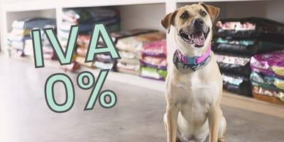 No más IVA en alimentos para mascotas: propuesta de Hacienda para 2022