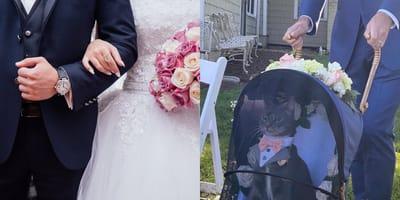 Publican una foto del paje de anillos y su boda se vuelve noticia mundial
