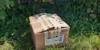 Płock: szczelnie zaklejone pudło porzucone przy drodze, a w środku...