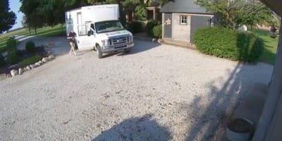 Repartidor baja del camión y coge algo extraño del suelo: las cámaras de seguridad captan una escena dantesca (Vídeo)
