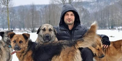 """Turks popidool komt op voor dierenrechten: """"geen dier is eigendom"""""""