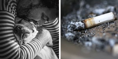 Roken soms schadelijker voor huisdier dan mens zelf