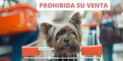 Ley de bienestar animal España: los particulares no podrán comprar animales en tiendas ni dedicarse a la cría
