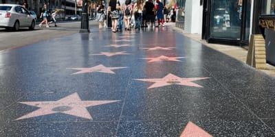 Il cane fa la cacca sulla Walk of Fame proprio su quella stella!