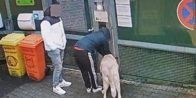 Überwachungskamera in Düsseldorf erwischt zwei Männer auf frischer Tat!