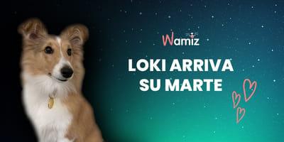 Storie di Cani: Loki arriva su Marte