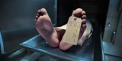 Leiche gefunden: Hausdurchsuchung  bringt Wochen später Fürchterliches ans Licht!