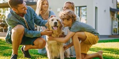 Come capire se il cane è felice? Ecco i 5 segnali
