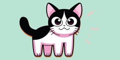 gato de anime