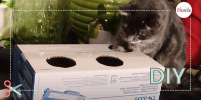 DIY:  Juguetes interactivos para gatos sencillísimos con materiales que ya tienes en casa